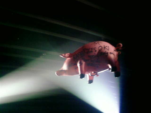 floyd-pig5