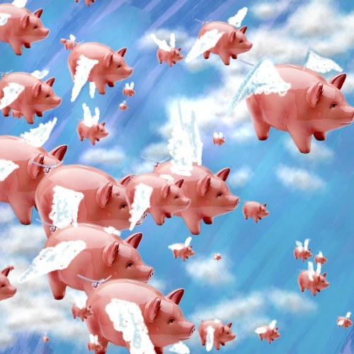 pigs_fly