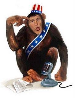 bush_chimp
