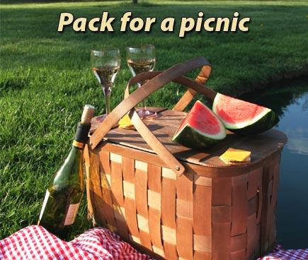 12_picnic