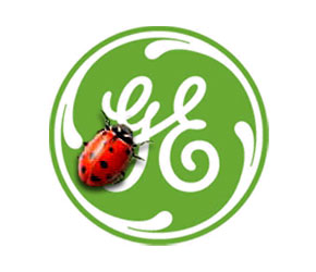 GE: Big Green $$$