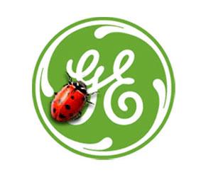 GE: Big Green $$$