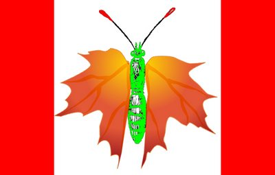 Maple Leaf Butterflag 2
