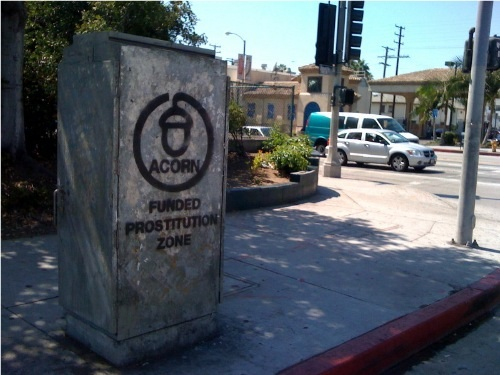 acorn-funded-prostitution-zone-1