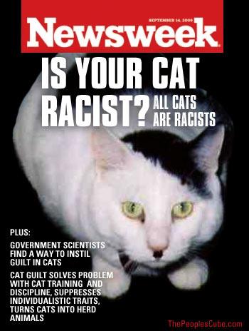 Newsweek_Racist_Cats