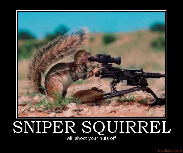 sniper-squirrel-sniper-squirrel-demotivational-poster-1222872232