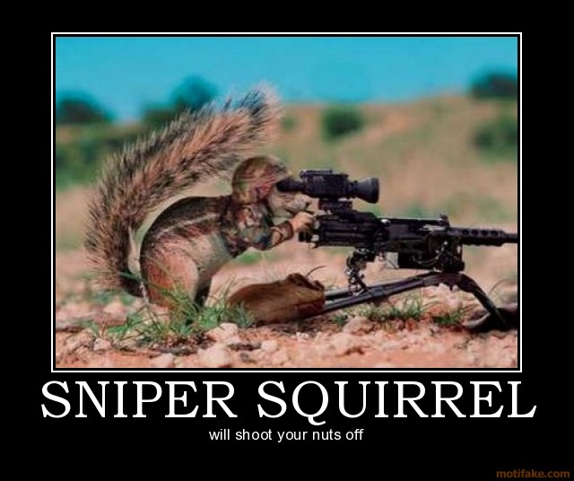sniper-squirrel-sniper-squirrel-demotivational-poster-1222872232