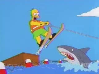 Homer Jump Shark