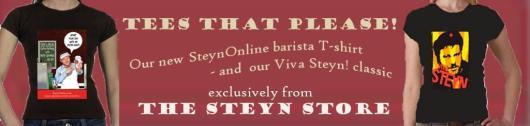 viva barista banner med