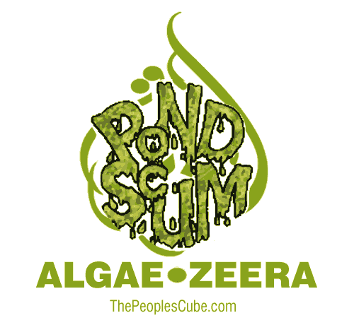 Algae_Zeera_Aljazeera