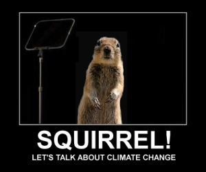 climate-change-squirrel