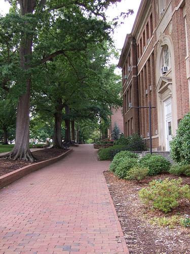 empty-campus-walk