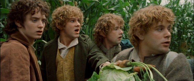 Frodo-hobbits-4817820-852-359
