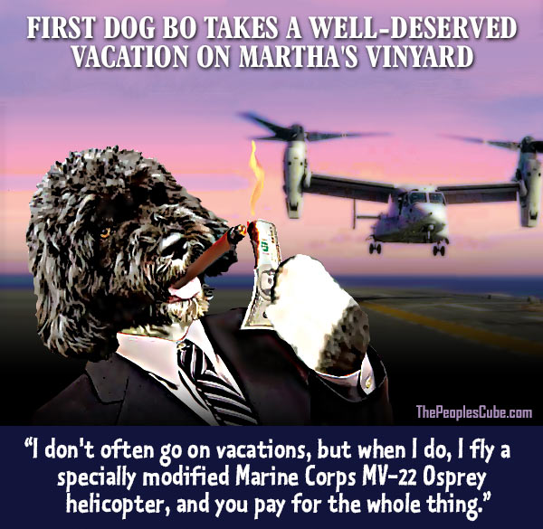 Bo_Obama_Dog_Vacation_Helicopter