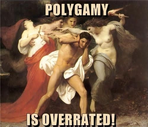 polygamy overrated