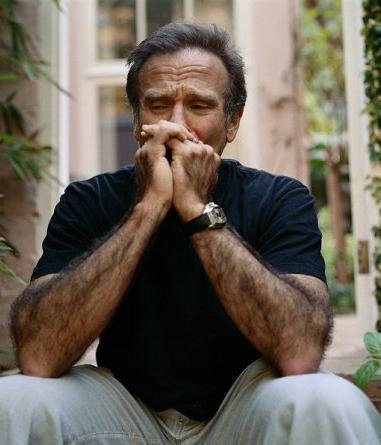 Robin-Williams-robin-williams-3674072-381-445
