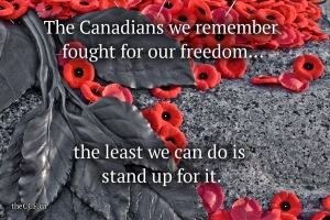 CanadianConstitutionFoundationPoppies