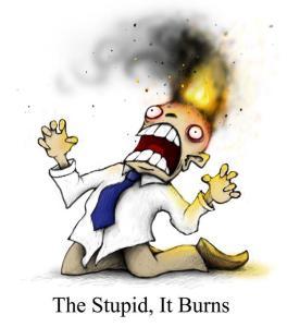 The-Stupid