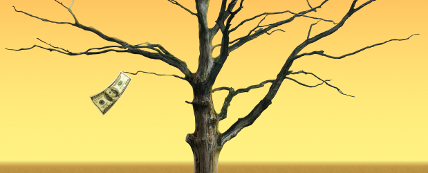 dead_tree_png_by_gd08-d3hs9tf-EditedbyMitch-e1361160552109