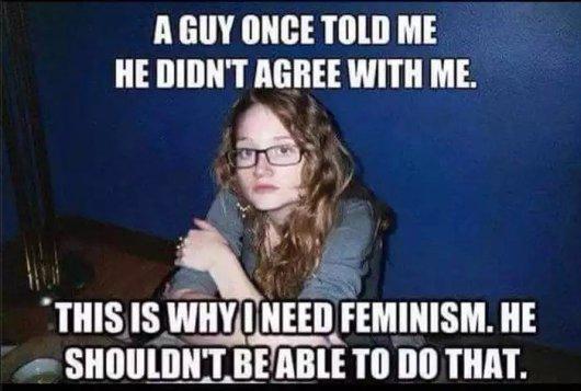 I+need+feminism_59ed62_5697052