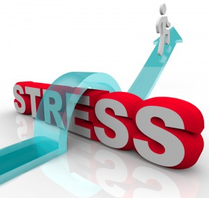 ProLucro_Menos-Stress-300x284