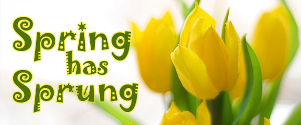 spring-sprung