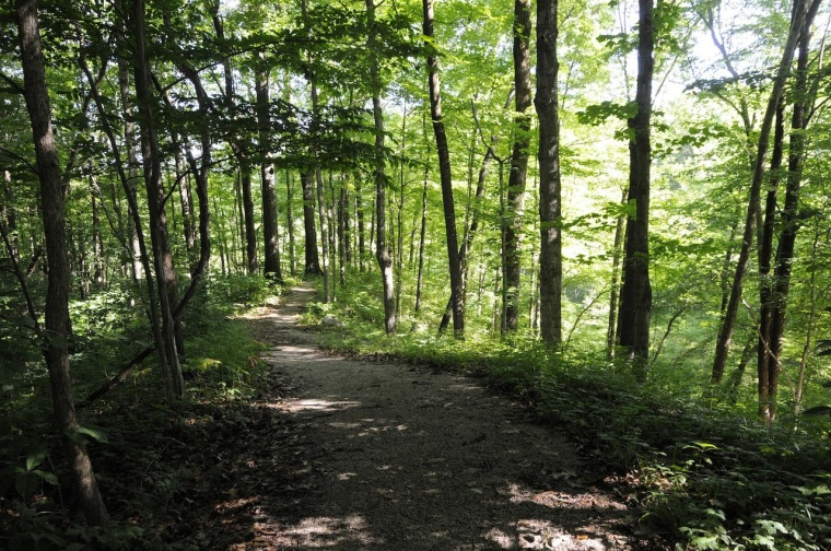 nature-park-4