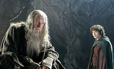 Lord of the Rings The Fellowship of the Ring Movie Review DVD Review